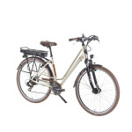 Mestský-elektrobicykel-Devron-28122