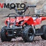 QW-Moto-ATV-Mini-Hunter-49cc-Stvorkolka